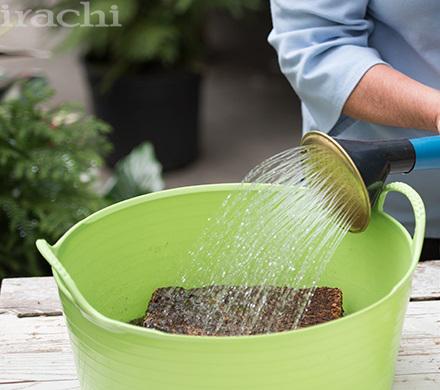 کاشت گیاه تراریوم مرحله اول